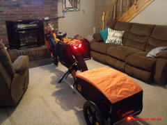Retrospec Rover Hauler Cargo Bike Trailer Review