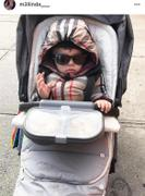 Orbit Baby Stroll & Ride Travel System in Merino Wool Review