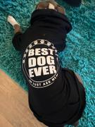 Pit Bull Gear BEST DOG EVER - ZIPPER DOG HOODIE Review