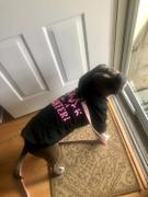 Pit Bull Gear I'M A LOVER NOT A FIGHTER - ZIPPER DOG HOODIE Review