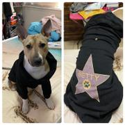 Pit Bull Gear HOLLYWOOD WALK OF FAME (YOUR DOG) - ZIPPER DOG HOODIE Review