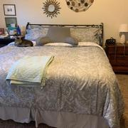 Southshore Fine Linens Winter Brush Print Ultra-Soft & Supreme Quality Reversible Comforter Set Review
