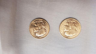Bitgild 20 French Francs - Marianne, Rooster, Gold Review