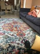 housecosy Maverick distressed persian rug, multi Review