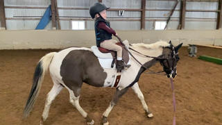 Free Ride Equestrian Children's Lux Knee Patch Breechs sizes 3t-9years Review