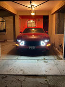 RTR Vehicles RTR Upper Grille with LED Lights (18-20 GT & EcoBoost) Review