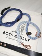 Boss & Olly Customise an Alternate Colours Leash Review
