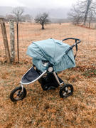 Bumbleride 2019 Indie - All Terrain Stroller Review