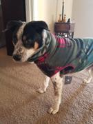 Tooth & Honey Opal Creek Fleece Dog Vest Review