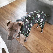Tooth & Honey Best Buds Dog Pajama Review