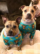 Tooth & Honey Monkey Dog Pajama Review