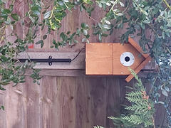 Green Feathers Complete DIY Wired Bird Box Camera Kit Review