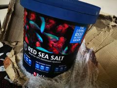 Indiefur.Com Red Sea Salt Review