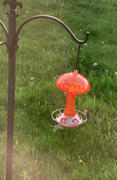 Grateful Gnome Red and Orange Mushroom Hummingbird Feeders - 32 Fluid Ounces Review
