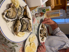 Greenfish Live box | Large Fresh Oysters (x12) | Farmed on West Coast Review
