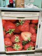 Best Appliance Skins Sweet Strawberries<br/>Dishwasher Magnet Skin Review
