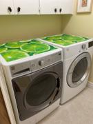 Best Appliance Skins Fresh Limes<br/>Dishwasher Magnet Skin Review