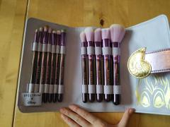 Spectrum Collections Ursula 12 Piece Brush Set & Roll Review