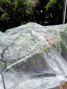 AgFabric As Wide As Needed Insect Barrier Netting, 16ftW Review