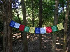 Dharma Shop World Peace Prayer Flags Review