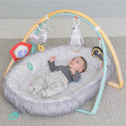 ITOTS BABY ONLINE SHOP Taf Toys Musical Newborn Cosy Gym Review