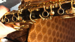Backun Musical Services MoBa Bb Clarinet Review