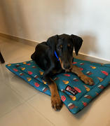 Petsy Mutt Of Course Pupsicles Mat Review
