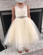 Princessly Light Champagne Lace Tulle Sheer Back Wedding Flower Girl Dress with Beaded Belt Review