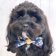Sebastian Says Liberty Bow Tie - Sunflower Review