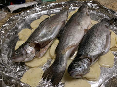 Pure Food Fish Market Fresh Whole Rainbow Trout Review