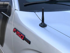 BuiltRight Industries Perfect-Fit Stubby Antenna | Ford F-150 (2009-14) Review