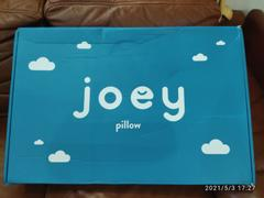 Joey Mattress The Joey Pillow Review