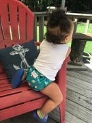 Green Mountain Diapers Smart Bottoms Smart One All-In-One Diaper Review