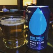 DrinkNA Big Drop Brewing Co. Pine Trail Pale (<0.5% ABV | 6-Pack | 12oz.) Review