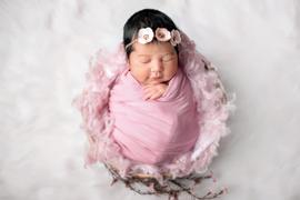 Newborn Studio Props Bean Bag Fabric - Smooth - Mauve Review