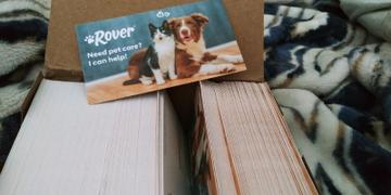 The Rover Store Sitter Promo Cards (250 cards) Review