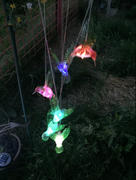 Next Deal Shop Solar-Powered Dangling Hummingbird Lights Review