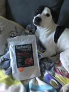 Frank and Jellys ByBenji Biltong Training  Review