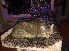 The Cat Ball Cat Sleeping Mat in Luxury Faux Fur Review