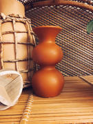 Holistic Habitat  Shape Study Sienna Vase Review
