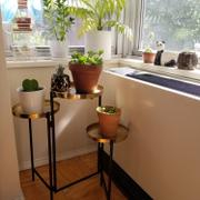 Holistic Habitat  Three Tier Brass Mandala Plant Stand Review