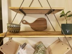 Holistic Habitat  Triangle Sling Shelf Review