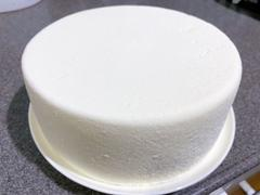 New England Cheesemaking Supply Company Tomme Cheese Mold Review