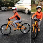 Ready, Set, Pedal Frog 55 8-Speed Bike Review
