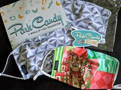 Park Candy Children's Holiday Small World Reusable Face Mask - LATE NOVEMBER PREORDER Review