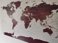 Trip Map Push Pin World Map - Burgundy (Detailed) Review