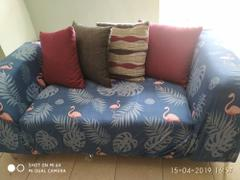 DecorZee Blue Palm Flamingo Pattern Sofa Couch Cover Review