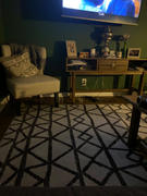 Poly & Bark Niles Area Rug Review