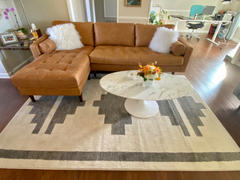 Poly & Bark Pareto Area Rug Review