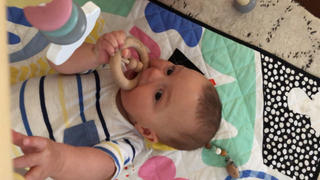 Little Woods Aus BEECHWOOD WOODEN RATTLE & TEETHER Review